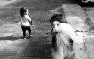 Niña pasea un perro